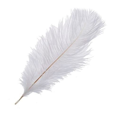 Перья страуса Белые, 40*45 см, 1шт