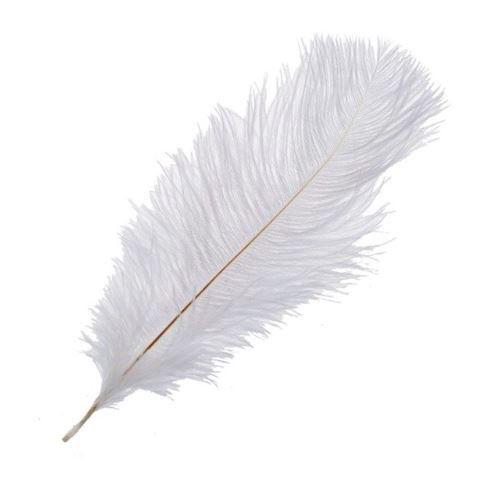 Перья страуса Белые, 20*25 см, 5шт