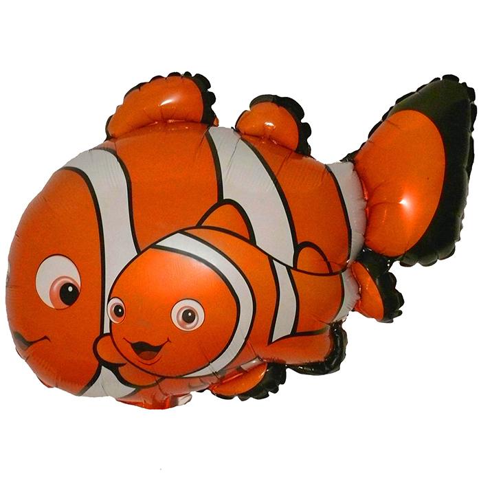 И 14 Рыбка-Клоун 2